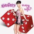 Waking up in Vegas - 单曲及混音封面