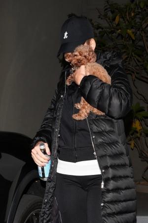 Katy Perry 抱着狗离开办公室 - 2019年1月10日街拍