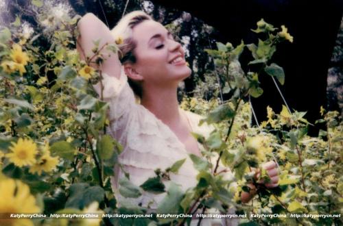 """KP5时代开启:Katy Perry宣布发行新专辑的首波主打""""Daisies"""""""