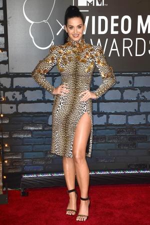 2013 MTV Video Music Awards - 红地毯
