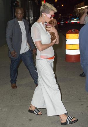 Katy Perry身穿白衣带宠物狗Nugget在纽约外出 - 2017年5月19日街拍