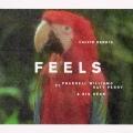 Feels - 单曲封面